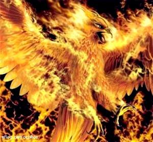 Large phoenix